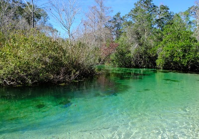 A Weeki Wachee Winter