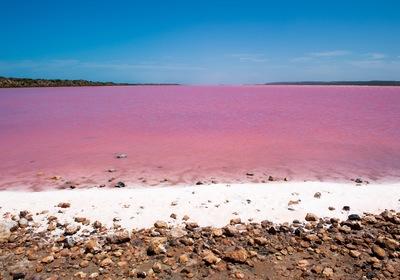 Exploring Australia's Pink Lakes